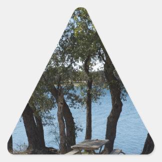 Adesivo Triangular Piquenique no lago