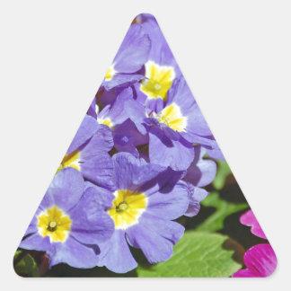 Adesivo Triangular Prímulas cor-de-rosa e roxas