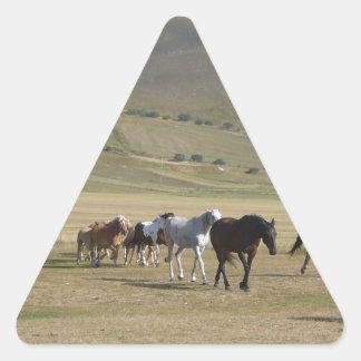 Adesivo Triangular Rebanho dos cavalos