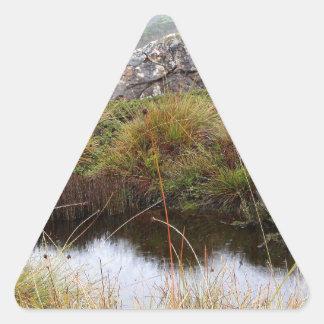 Adesivo Triangular Reflexões enevoadas da manhã, Tasmânia, Austrália