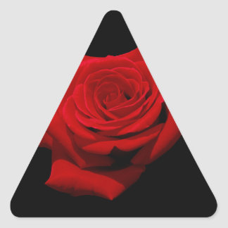 Adesivo Triangular Rosa vermelha no fundo preto