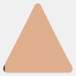 Adesivo Triangular Saco de papel