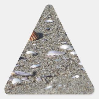 Adesivo Triangular Seashells na areia. Fundo da praia do verão