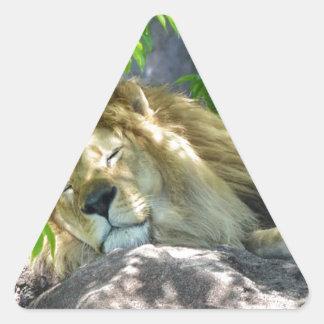 Adesivo Triangular sesta do leão