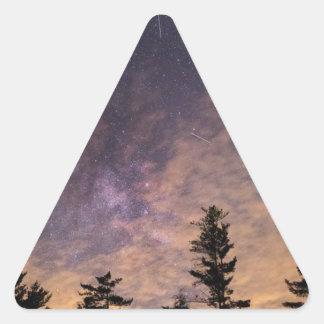 Adesivo Triangular Silhueta das árvores na noite
