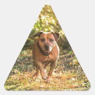 Adesivo Triangular Staffordshire bull terrier