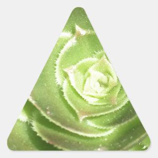 Adesivo Triangular Succulent verde