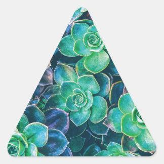 Adesivo Triangular Succulents, Succulent, cacto, cactos, verde,