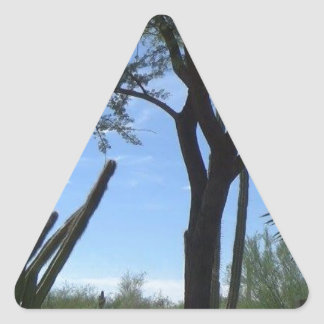 Adesivo Triangular Sudoeste