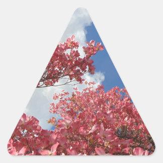 Adesivo Triangular Torrente das flores