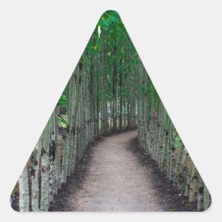 Adesivo Triangular Trajeto do parque