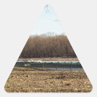 Adesivo Triangular Vida do rio