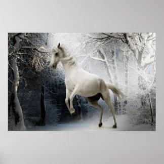 Afixar cavalo branco na neve pôster