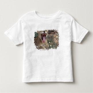 África do Sul, parque internacional de Kgalagadi, Camiseta Infantil