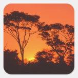 África do Sul.  Por do sol africano Adesivo Quadrado