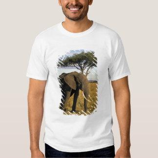 África, Kenya, Maasai Mara. Um elehpant no Camiseta