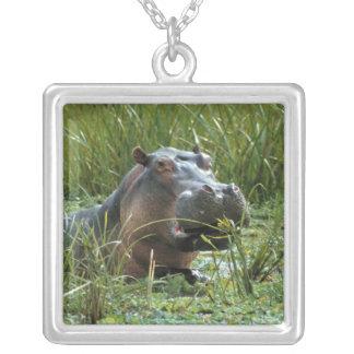 África, Kenya, Masai Mara NR. Um hipopótamo da mãe Colar Com Pendente Quadrado