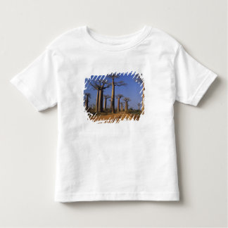 África, Madagascar, Morondava, avenida do Baobab Camiseta Infantil