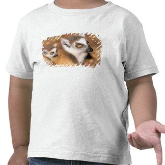 África, Madagascar, reserva privada de Berenty Camisetas