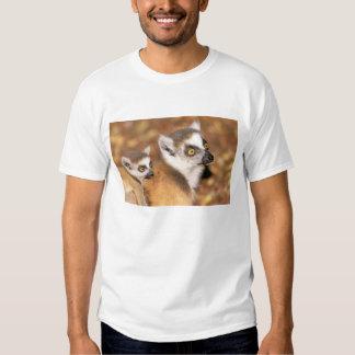 África, Madagascar, reserva privada de Berenty Camiseta