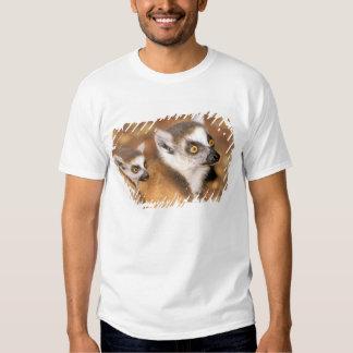 África, Madagascar, reserva privada de Berenty Tshirts