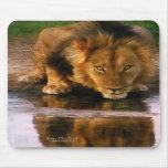 África - sede para a vida Mousepad