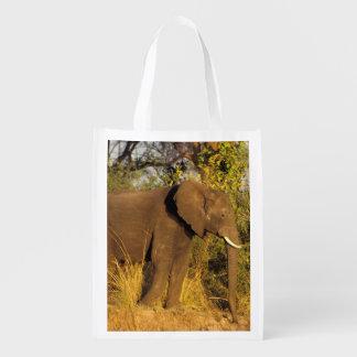 África, Zimbabwe, parque nacional de Cataratas Vit Sacola Ecológica Para Supermercado