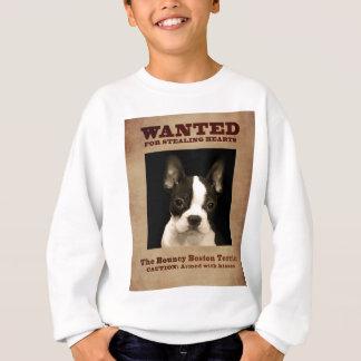 Agasalho A Boston Bouncy Terrier