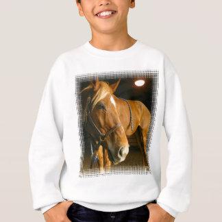 Agasalho A camisola das crianças da foto do cavalo da