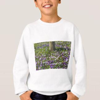 Agasalho Açafrões do campo de flores na grama do primavera