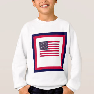 Agasalho Bandeira americana (seu texto)