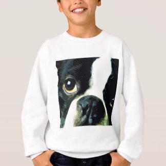 Agasalho Boston grande moderna Terrier