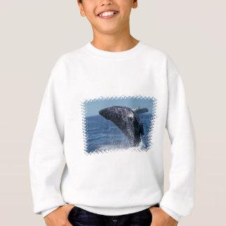 Agasalho Camisola de salto da juventude da baleia de