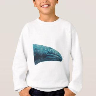 Agasalho Canção da baleia
