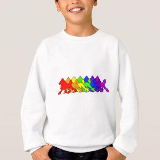 Agasalho Caniche do arco-íris