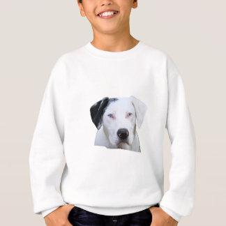 Agasalho Cão de cão de Catahoula