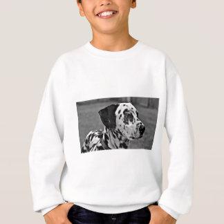 Agasalho Cão de estimação Dalmatian