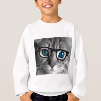 AGASALHO CAT NOS VIDROS 1