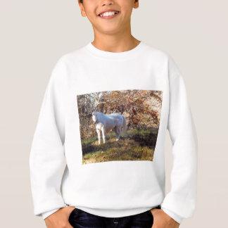 Agasalho Cavalo branco bonito