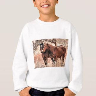 Agasalho Cavalos Nuzzling