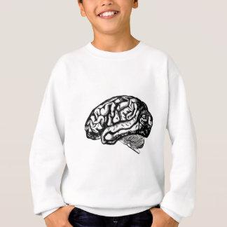 Agasalho cérebro humano