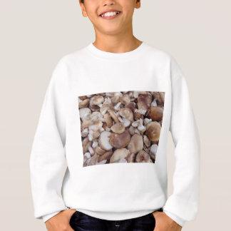 Agasalho Cogumelos de Shiitake