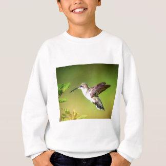 Agasalho Colibri em vôo