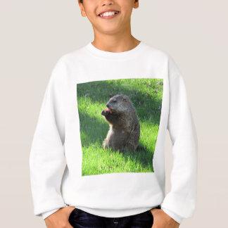 Agasalho Comer de Groundhog