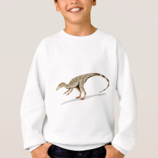 Agasalho Compsognathus