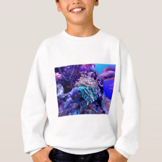 Agasalho coral-1053837