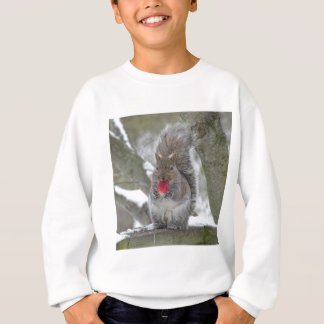 Agasalho Esquilo da morango