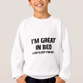 Agasalho Excelente na cama