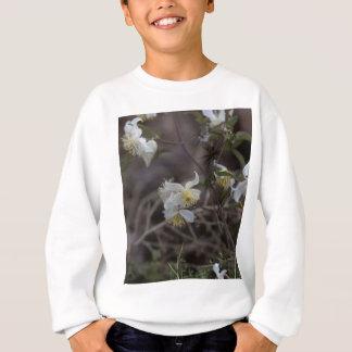 Agasalho Flores da alegria do viajante (brachiata do
