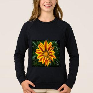 Agasalho Foto alaranjada bonita da flor de Sun
